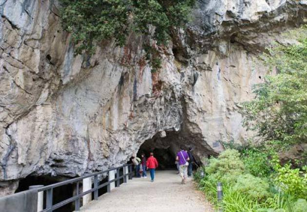 Entrada cueva Tito Bustillo