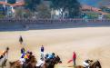 Carrera caballos